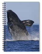 Discovering Another Dimension Spiral Notebook