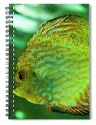 Discus Fish Spiral Notebook