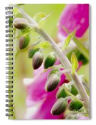 Discussing When To Bloom Spiral Notebook