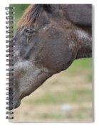 Disgust Spiral Notebook