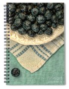 Dish Of Fresh Blueberries Spiral Notebook