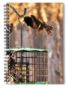 Dispute Spiral Notebook