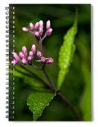 Ditch Mystery Spiral Notebook