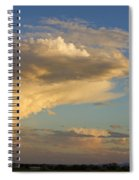 Dive Into The Night Spiral Notebook