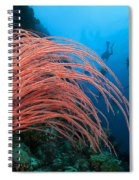 Divers And Whip Coral Spiral Notebook