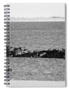 Diving Coney Island In Black And White Spiral Notebook