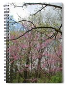 Divinity Spiral Notebook