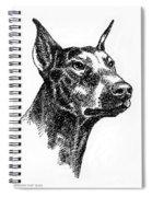 Doberman-pincher-portrait Spiral Notebook