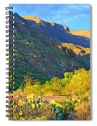 Dog Canyon Nm Oliver Lee Memorial State Park Spiral Notebook