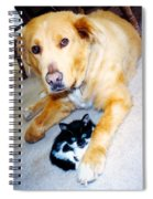 Dog Named Forest And Kitten Named Princess Spiral Notebook