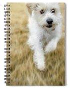 Dog Running Spiral Notebook