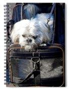 Doggie To Go Spiral Notebook
