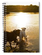 Dogs At Sunset Spiral Notebook