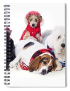 Dogs Wearing Winter Accessories Spiral Notebook