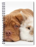 Dogue De Bordeaux Puppy With Bunny Spiral Notebook