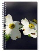 Dogwood Blossom - Beelightful Spiral Notebook