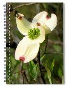 Dogwood Blossome Spiral Notebook