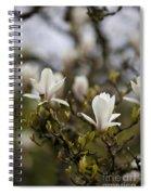 Dogwood Duet Spiral Notebook