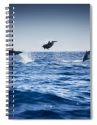 Dolphins Playing In The Ocean Spiral Notebook