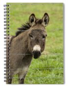 Donkey - The Beast Of Burden Spiral Notebook