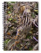 Dos Munks Spiral Notebook