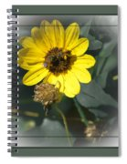 Double Duty Spiral Notebook