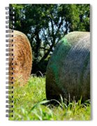 Double Hay Rolls Spiral Notebook