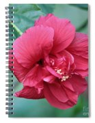 Double Hibiscus Spiral Notebook