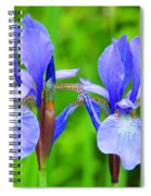 Double Iris Spiral Notebook