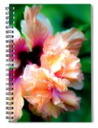 Double Peach Hibiscus Five Spiral Notebook