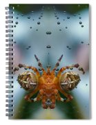 Double Spider Spiral Notebook