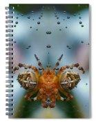Double Spider Spiral Notebook
