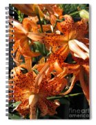 Double Tiger Lily Named Flora Pleno Spiral Notebook