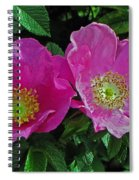 Double Wild Rose Spiral Notebook