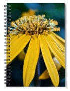 Double Yellow Spiral Notebook