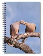 Dove Devotion Spiral Notebook