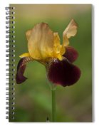 Down Home Two-tone Iris Spiral Notebook