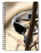Down Under Spiral Notebook