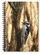 Downy In The Bushes Spiral Notebook