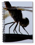 Dragon On The Wire Spiral Notebook