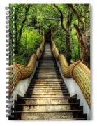 Dragon Steps Spiral Notebook