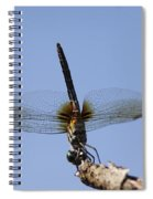 Dragonfly - Handstand Spiral Notebook