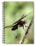 Dragonfly - Yellow Stripe Spiral Notebook