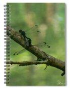 Dragonfly Hanky Panky Spiral Notebook