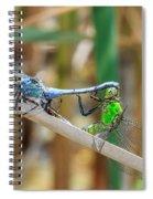 Dragonfly Love Spiral Notebook
