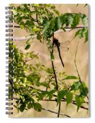 Dragonfly Lunch Spiral Notebook