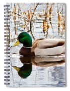 Drake  Spiral Notebook