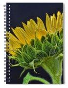 Drama Spiral Notebook