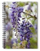 Draping Lavender Purple Wisteria Vines Spiral Notebook