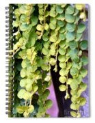 Draping Spiral Notebook